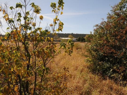 The American Gulch Loop Trail is an easy walk just off Main Street in Payson.