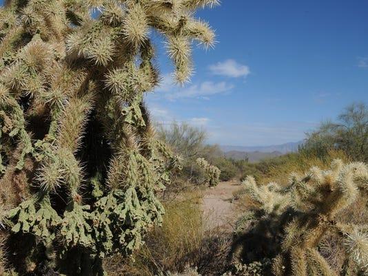 Wild Horse Trail