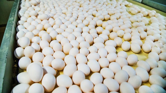 Rose Acre Farms of Seymour is recalling more than 200 million eggs