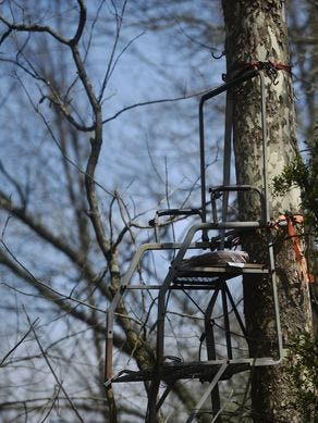 A tree stand on Area 416 sits high in a tree on Area 416.