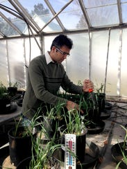 Rajan Ghimire, Ph.D., is working towards finding sustainable