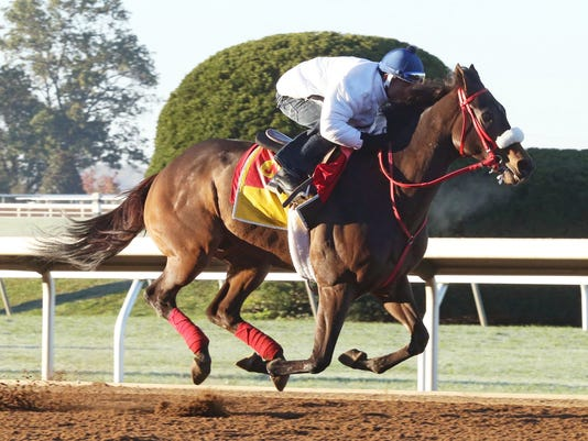 Private Zone - Morning Workout - Keeneland Race Course - 101815