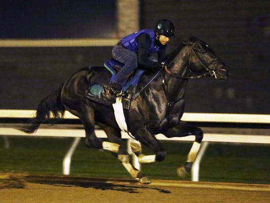 Limousine Liberal - Morning Workout - Keeneland Race Course - 10