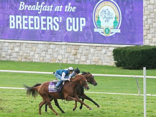 Undrafted (outside) and Green Mask worked together at Keeneland for the Turf Sprint.