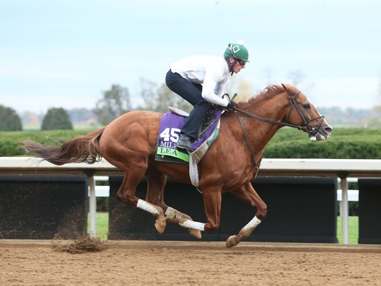 Lea - Morning Training - Keeneland Race Course - 102615