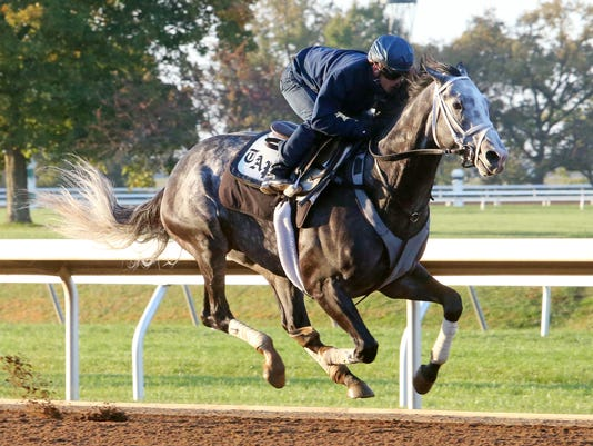 Liam's Map - Morning Workout - Keeneland Race Course - 102215
