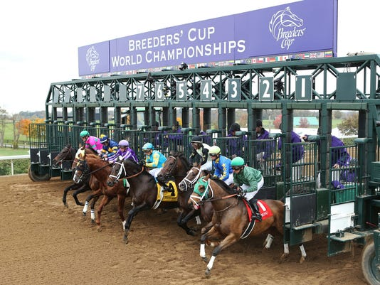 Breeders Cup 2015 Free Expert Saturday Picks For
