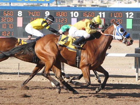 FMN Horses Recap 0320
