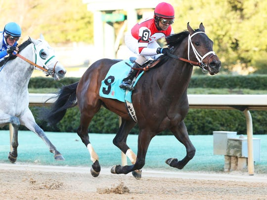 Dazzling Gem scored in allowance company last time out for trainer Brad Cox.