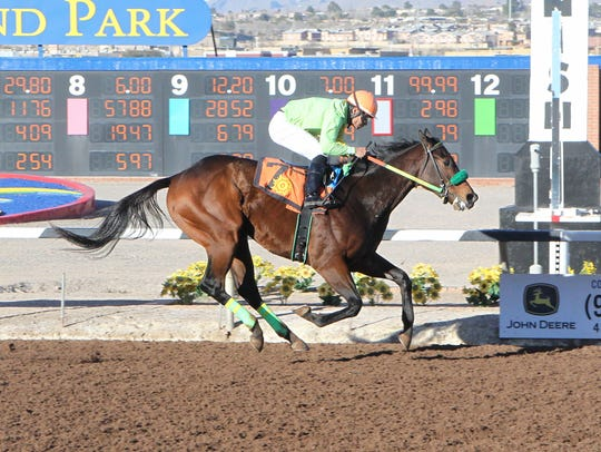 Conquest Mo Money won the Riley Allison Stakes earlier