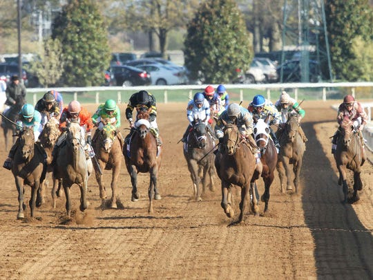 Brody's Cause came in eighth in his 2015 racing debut at Ellis Park but went on to win Keeneland's Grade 1 Claiborne Breeders' Futurity and Toyota Blue Grass Stakes (#6 in photo above).