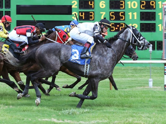 Sage Master, winning the fourth race at 43-1 under Sammy Camacho, in his first race ever at Ellis Park.