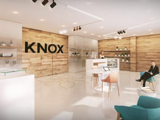 A rendering of the inside of Knox Medical, which will