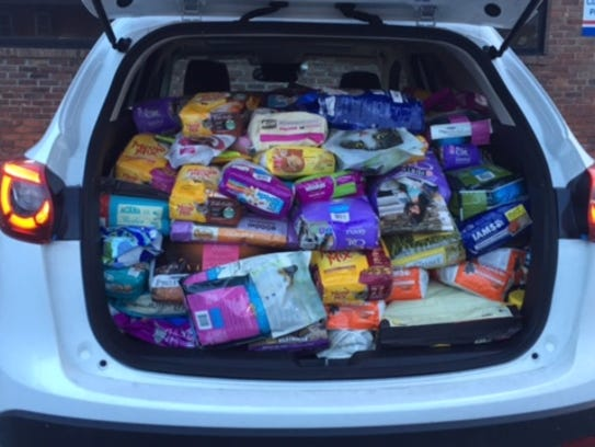 A carload of food from Wade Deffenbaugh of Pets Supplies