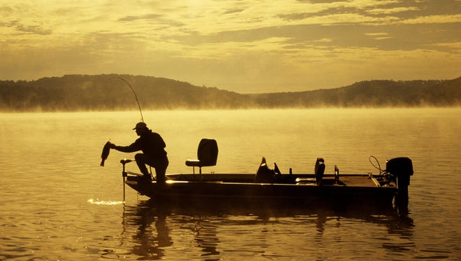 Ozarks bass anglers who used buzz baits in the high-water lakes this summer have been catching fish by casting close to trees and brush in the flooded water.