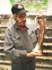 Jack Horner holds a metatarsal or foot bone from the