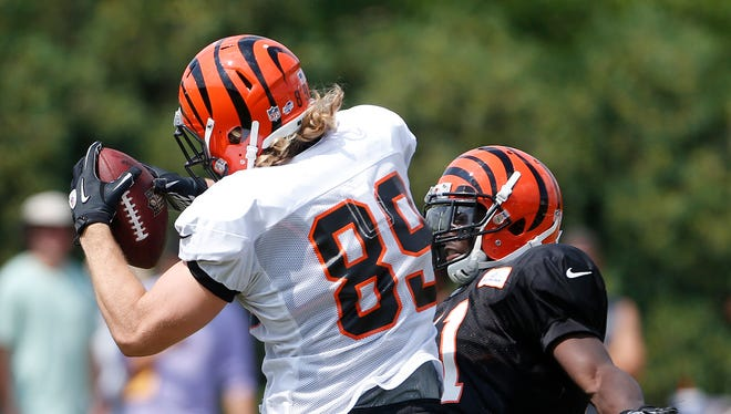 Cincinnati Bengals tight end Ryan Hewitt (89) catches a pass during during practice held at Paul Brown Stadium Thursday July 31, 2014.