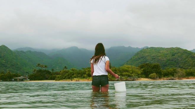 Penfield native Kelly Coyne works with conservation nonprofit Oceana on advocacy efforts to protect the world's oceans.