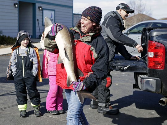 Melissa Meyer, of Chilton, carries in her sturgeon as Keith Hanke prepares to unload his catch Feb. 24 in Stockbridge, Wis.