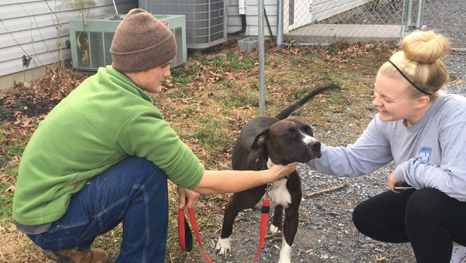 Dalton Aaron and Kaylee Floyd, both of Staunton, are reunited with their dog, Hooey, at the Shenandoah Valley Animal Services Center in Lyndhurst, Va., on Tuesday, Dec. 19, 2017.
