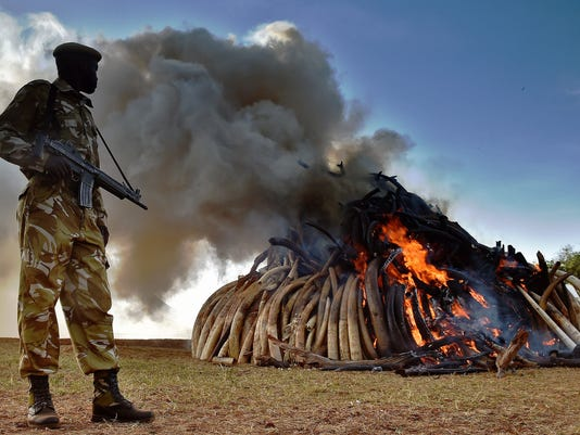 KENYA-WILDLIFE-CONSERVATION-IVORY-BURN