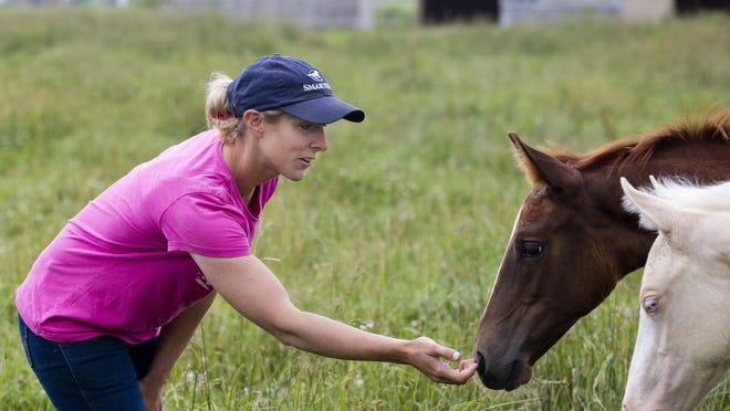 Marine City girls track coach Kristen Humble checks on some of her horses as they graze in a field Wednesday, July 1, 2015 at her home and ranch in Clyde Township.