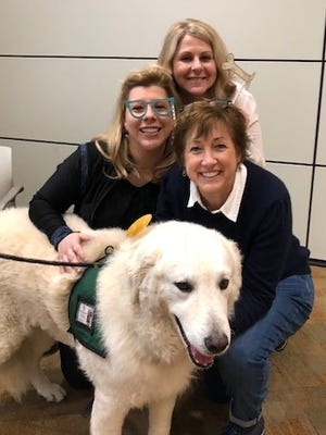 Therapy dogs come to work at Fidelity Investments in Covington.