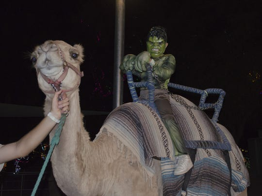 Kids can take a spooky camel ride at the Phoenix Zoo.