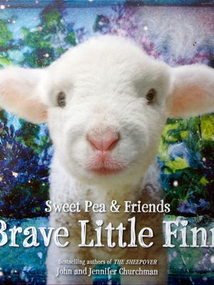 """The cover of """"Brave Little Finn,"""" a new book by John and Jennifer Churchman of Essex."""