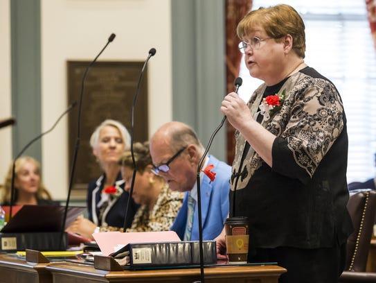Then-state Sen. Patricia Blevins, D-Elsmere, speaks