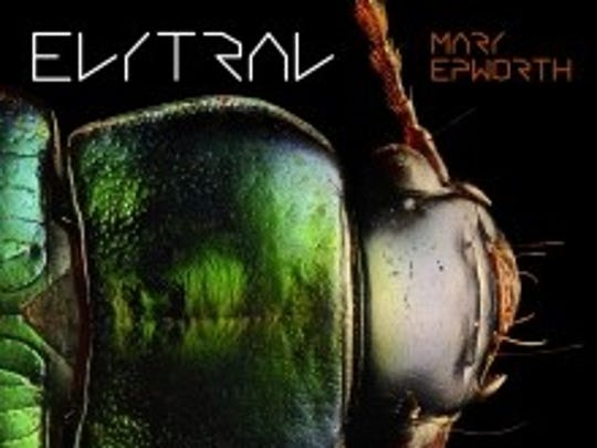 """Elytral"" by Mary Epworth"
