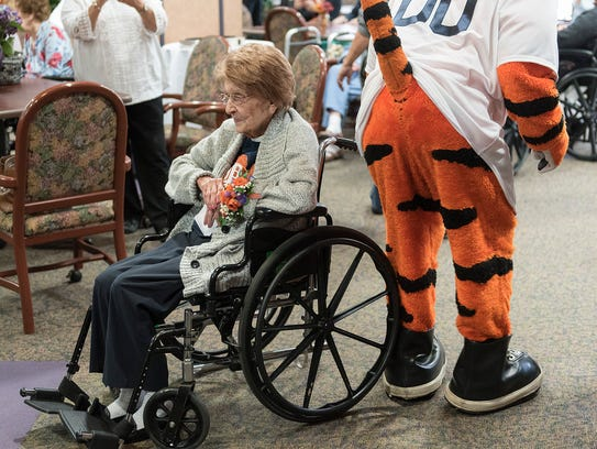 Tigers mascot Paws gets cheeky while dancing with with