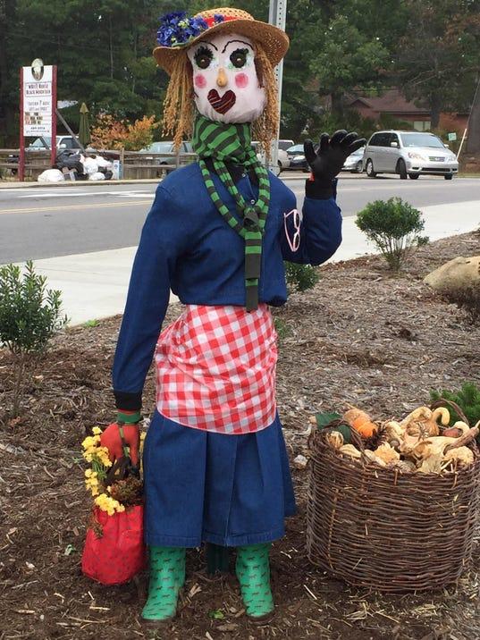 BMN 100115 Missing scarecrow