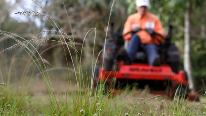 Milos Fila mows the overgrown grass at a Madison Avenue house in Fort Myers. In Fort Myers, one employee is responsible for all the mowing.