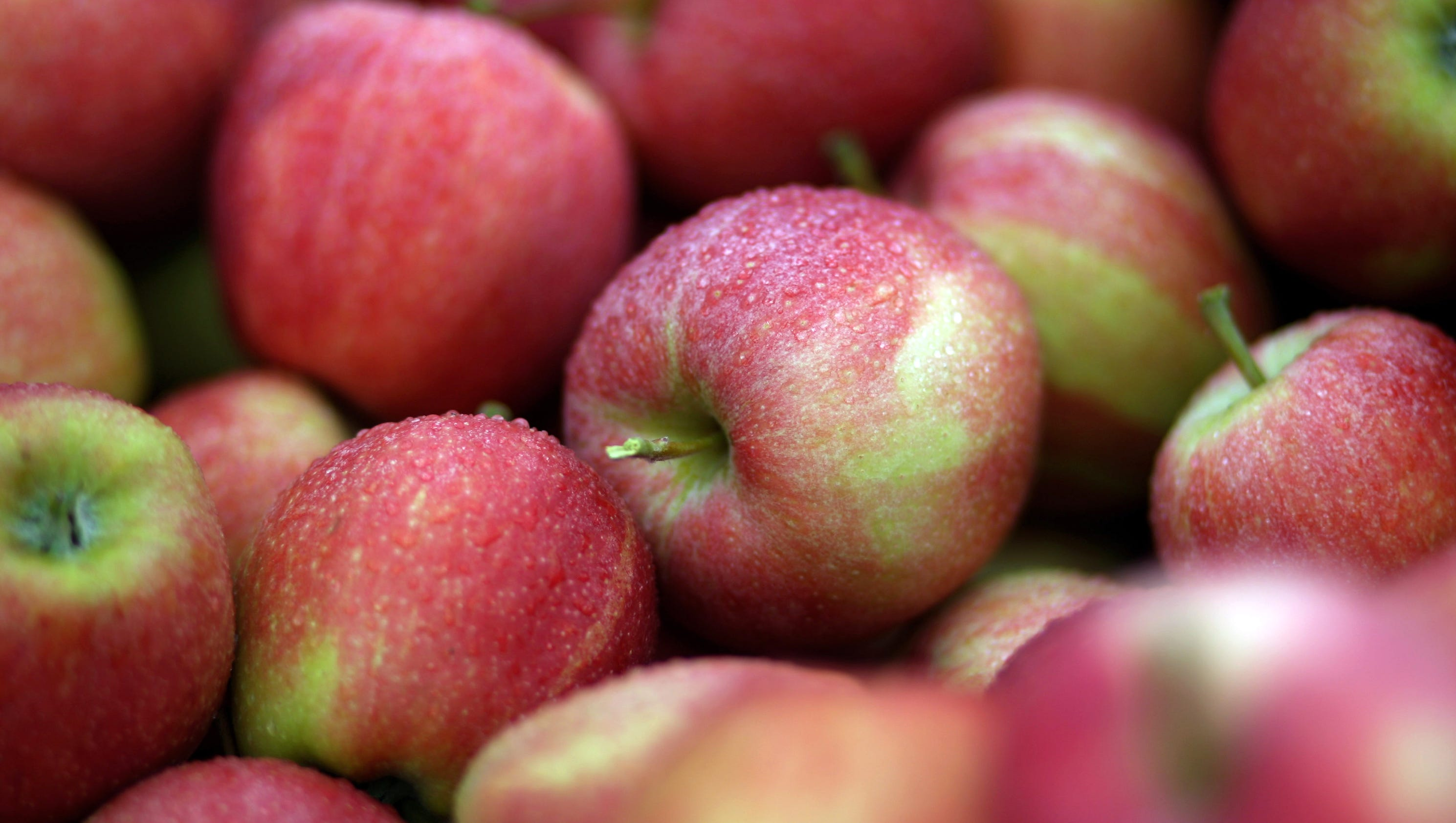 Let's Talk Food: Apples play big role in popular culture