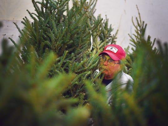 636476713001949635-Baumgartner-Family-Christmas-Trees-004.JPG