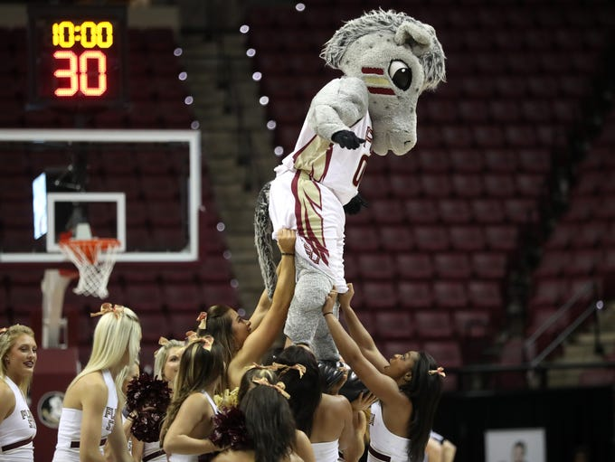 FSU's Cimarron performs with the cheerleaders during
