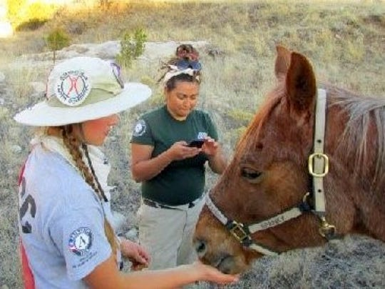 Members of the team make friends with an equine helper.