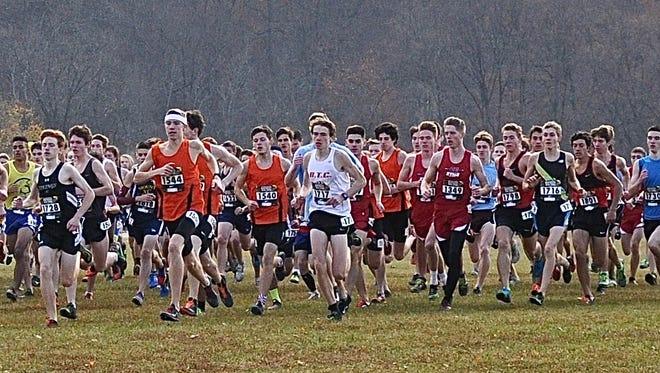 Briarcliff's Ryan Gallagher (in white, no. 1717) goes out with pack at start of boys Nike qualifier race. Gallagher finished 10th. Photo from Nov 26, 2016.