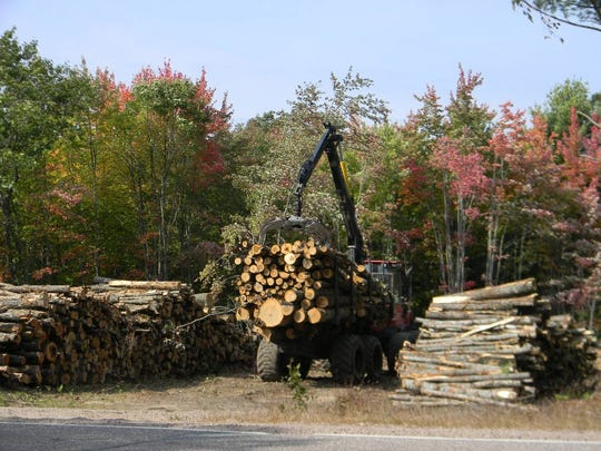 Loggers load timbers from county forests across from Wildcat Mound County Park on Highway B.