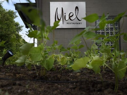 Miel combines its mad chef talent with grown-on-the-property herbs and veggies.