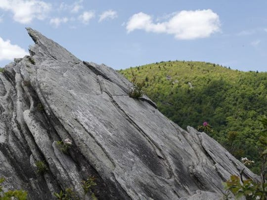 Grandfather Mountain State Park will host free public hikes and programs this weekend in honor of the North Carolina State Parks' 100th anniversary.