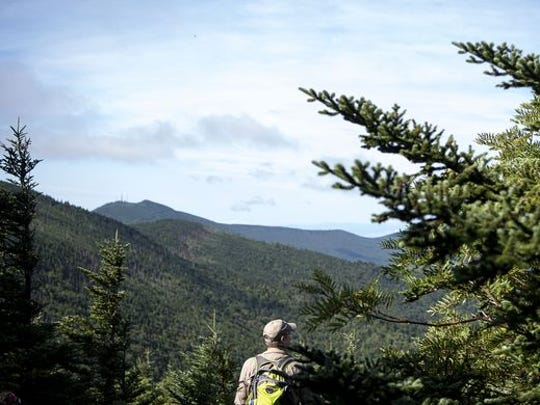 A hiker looks out over the view from Cattail Peak last summer. The peak was recently acquired by Mount Mitchell State Park, which had record visitation in 2016.