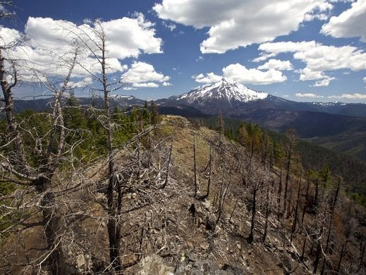 Wildfire scars make for stunning hike to this Mount Jefferson viewpoint and cave.