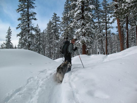 Ruffwear founder Patrick Kruse cross-country skis at Edison Sno-park in the Deschutes National Forest about 5 years ago with Mavis in his pack and Malamute on his tail.