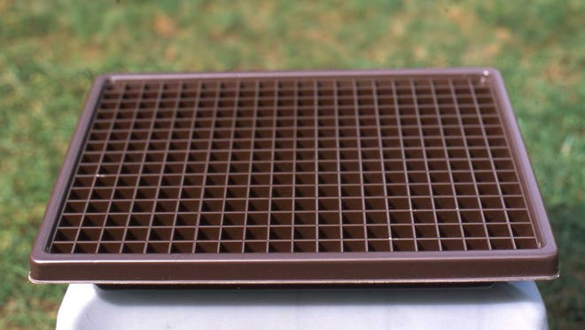Increase humidity around indoor plants with a humidity tray. A beneficial gift to help indoor plants flourish during the winter.