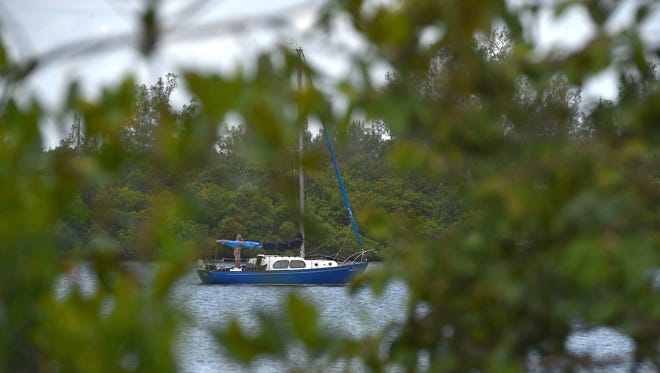 A sailboat cruses north on the Indian River Lagoon as seen across from the entrance of the Captain Forester Hammock Preserve along the South Jungle Trail in Vero Beach.