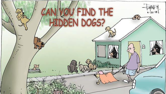 Sunday cartoon on stray dogs for 05/20/18