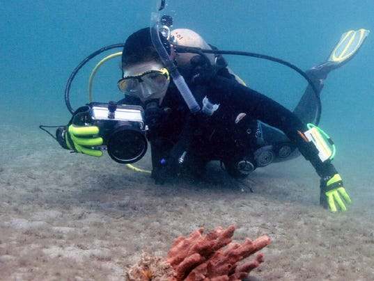 0124-ynmc-chelsea-and-octopus.jpg
