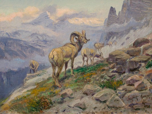 Mountain-Sheep-Grazing.jpg